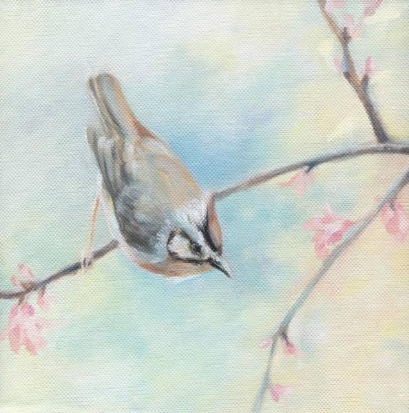 Wall Art - Painting - Songbird by Natasha Denger