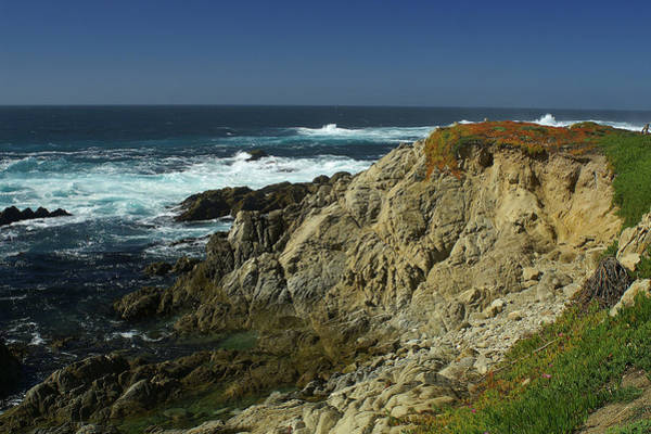 Photograph - Sonoma Coast 1 by David Armentrout