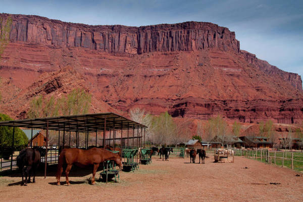 Ie Wall Art - Photograph - Sorrel River Ranch, Moab, Utah by Roddy Scheer