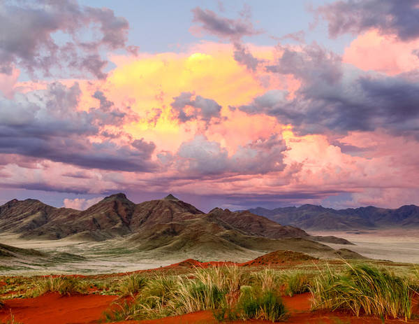Photograph - Sossulvei Sunset In Namibia by Gregory Daley  MPSA