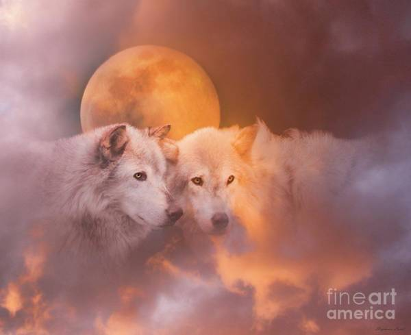 White Wolves Photograph - Soul Mates by Stephanie Laird