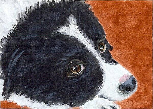 Soulful Eyes Art Print