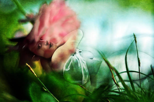 Photograph - Soul's Colors by Rebecca Sherman