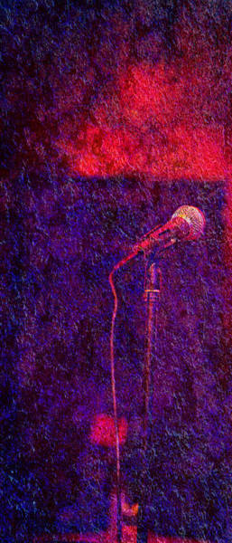 Photograph - Sound Bites Niche Art Microphone by Bob Coates