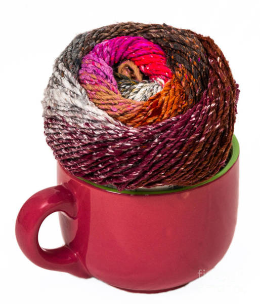 Photograph - Soup Bowl Full Of Yarn by Les Palenik