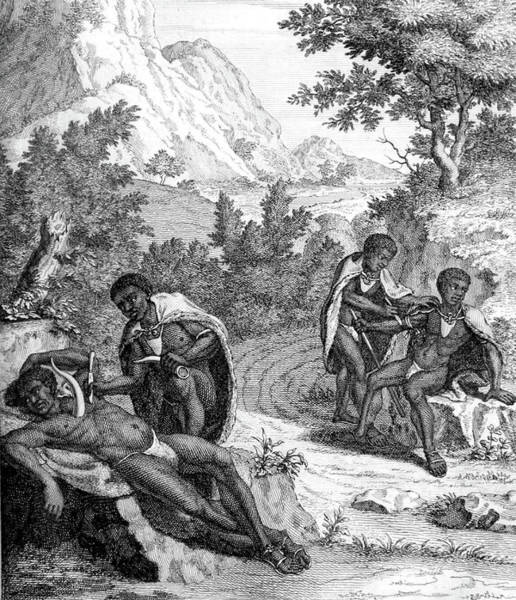 Arica Photograph - South Africa, Khoikhoi Bloodletting by Science Source
