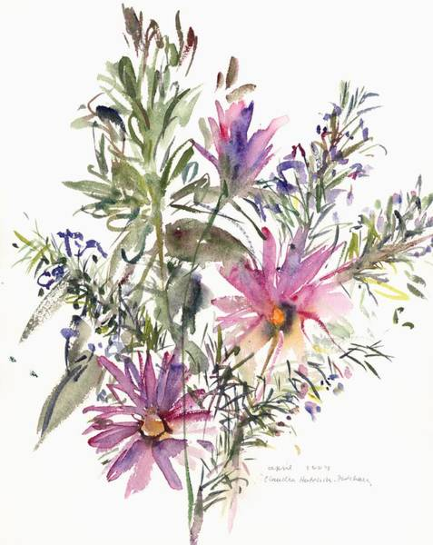 Osteospermum Painting - South African Daisies And Lavander by Claudia Hutchins-Puechavy