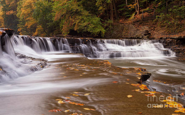 Wall Art - Photograph - South Chagrin River by Joshua Clark