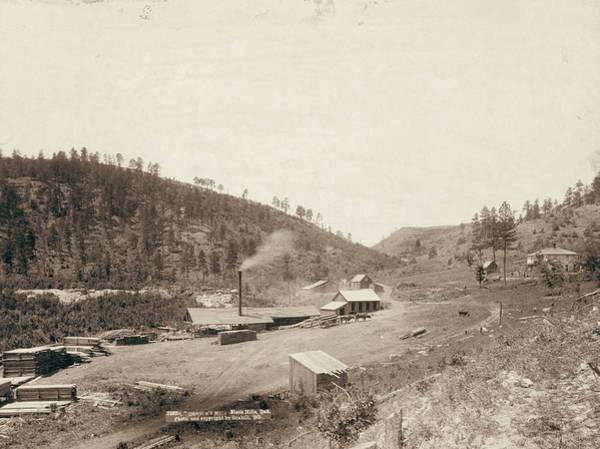 Photograph - South Dakota Black Hills by Granger