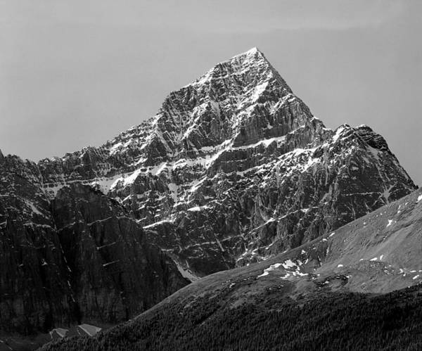 Photograph - 1m3830-e-bw-south Face Mt. Edith Cavell  by Ed  Cooper Photography
