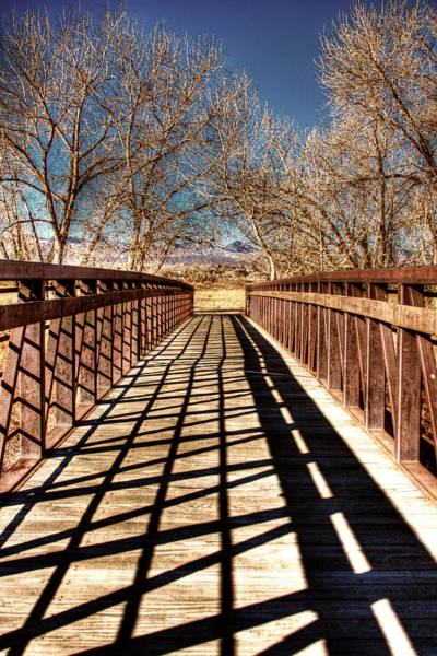 Photograph - South Platte River Bridge by David Patterson