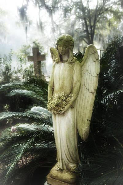 Southern Angel IIi Art Print