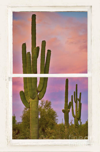 Wall Art - Photograph - Southwest Desert Colorful Distressed Window Art View by James BO Insogna