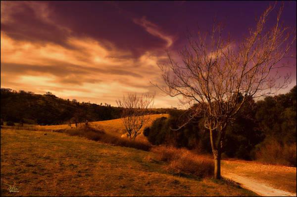 Photograph - Southwest Landscape by Douglas MooreZart