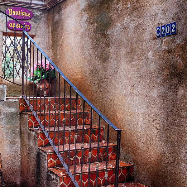 Photograph - Southwest Staircase by Ron White