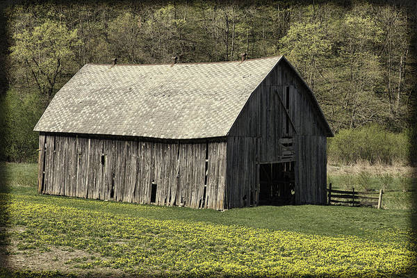 Photograph - Southwest Wisconsin Barn by Thomas Young