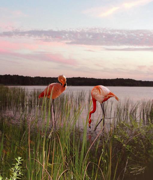 Marsh Bird Digital Art - Spade's Florida Flamingos by M Spadecaller