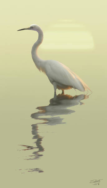 Egret Digital Art - Spade's Giant Egret by M Spadecaller