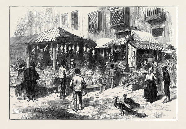 Old Style Drawing - Spain Old Market-place Of San Miguel 1873 by Spanish School
