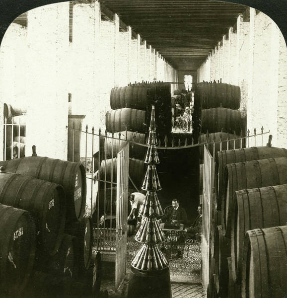 Spanish Wine Painting - Spain Winery, 1908 by Granger