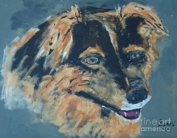 Painting - Spaniel Mix by Shelley Jones
