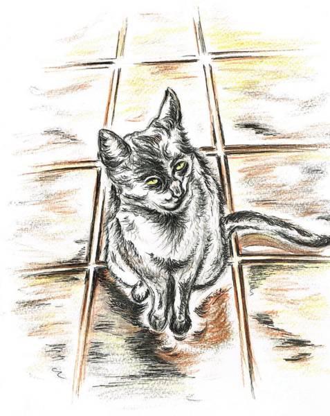 Spanish People Drawing - Spanish Cat Waiting by Teresa White