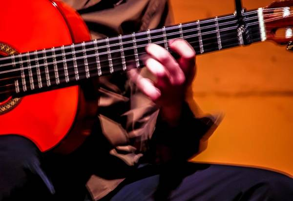 Photograph - Spanish Guitar by Jim DeLillo