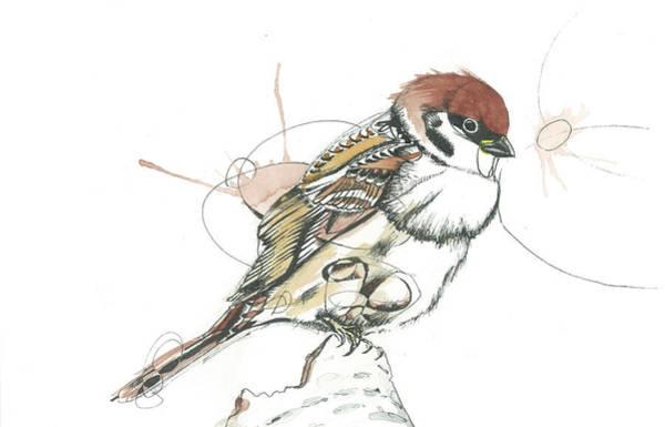 Sparrow Mixed Media - Sparrow by Gregory Ellis