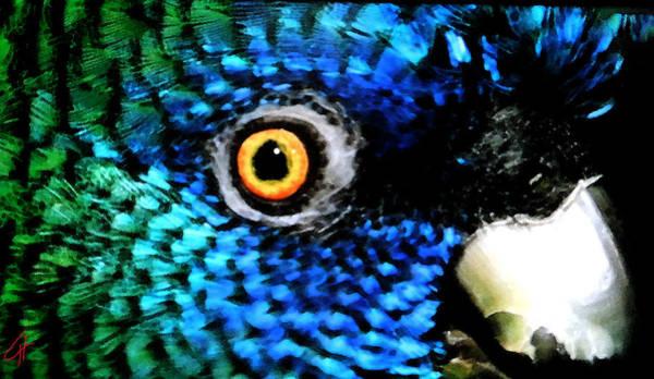 Speaking Eye  Art Print
