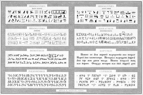 Wall Art - Drawing - Specimens Of Hieroglyphs,  Demotic by Mary Evans Picture Library