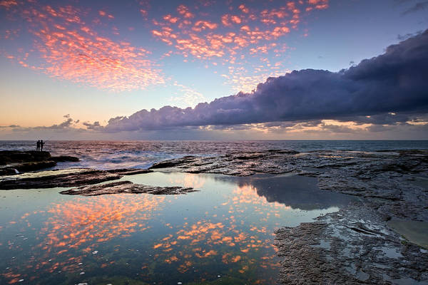 Photograph - Speckled Dawn by Mark Lucey