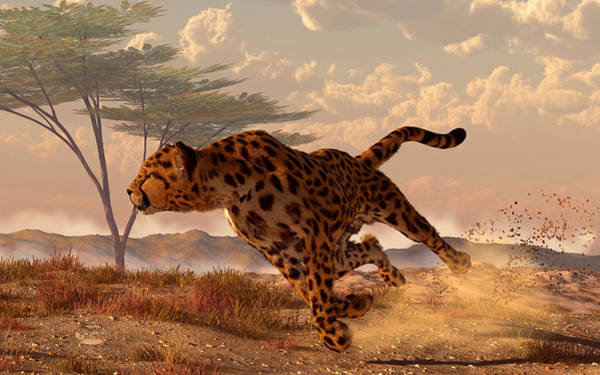 Digital Art - Speeding Cheetah by Daniel Eskridge
