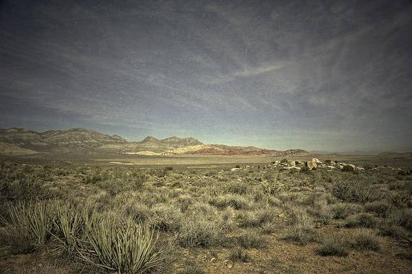 Photograph - Spell Of The Open Space by Mark Ross