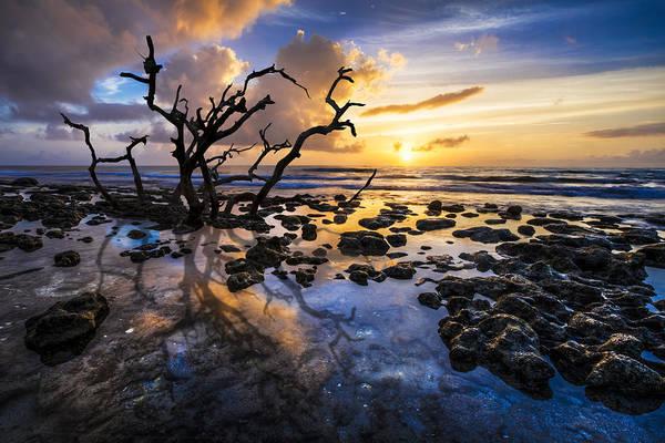 Singer Island Photograph - Spellbound by Debra and Dave Vanderlaan