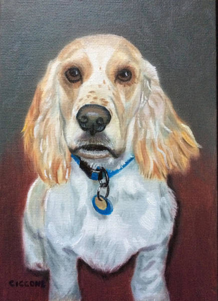 Painting - Spencer by Jill Ciccone Pike