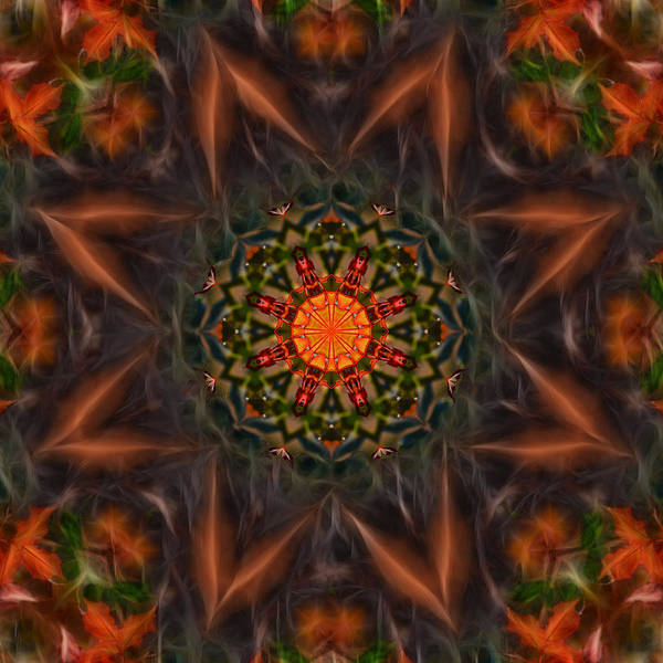 Photograph - Sphere Of Life Mandala by Beth Sawickie