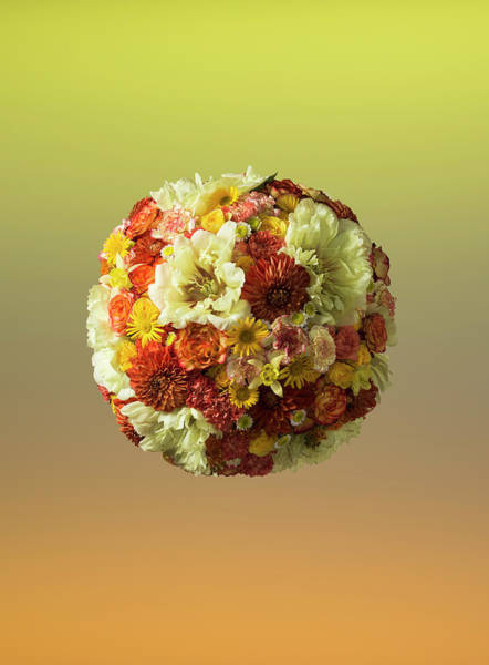 Photograph - Sphere Shaped Floral Arrangement by Jonathan Knowles