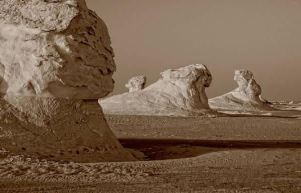 Photograph - Sphinx In The Desert by Nigel Fletcher-Jones