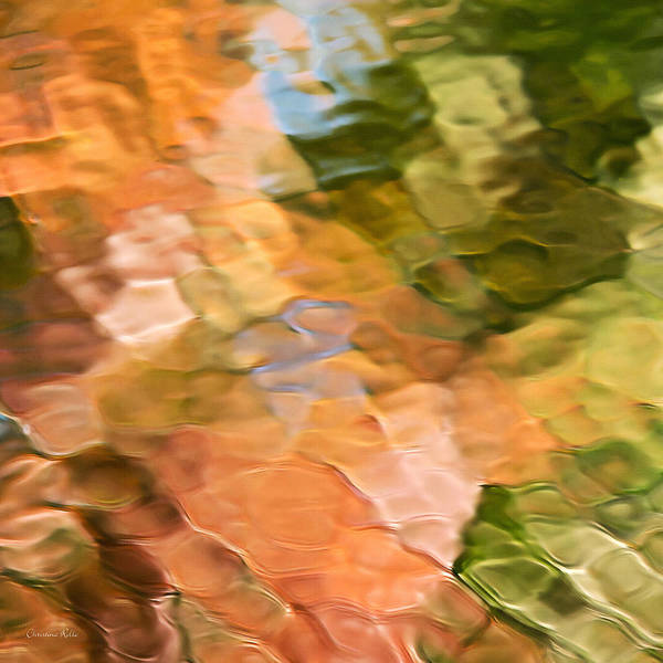 Photograph - Spice Mosaic Abstract Square by Christina Rollo