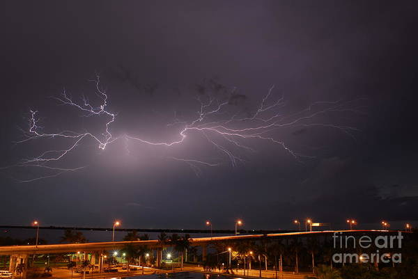 Electric Storm Photograph - Spider Lightning From Downtown Ft. Myers Florida by Quinn Sedam