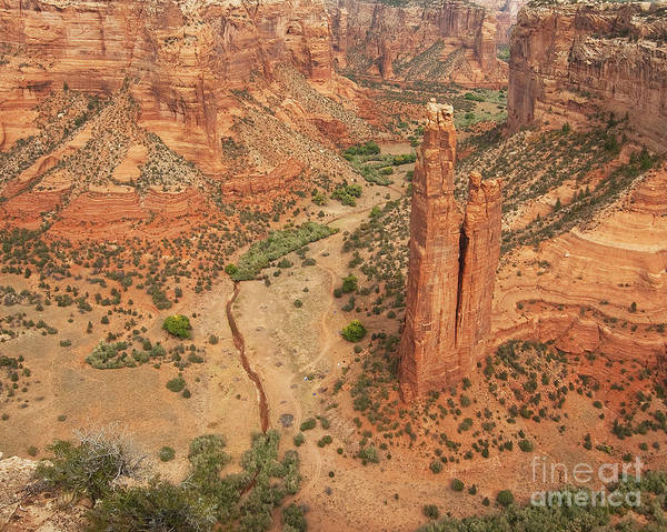 Spider Rock Photograph - Spider Rock by Bob and Nancy Kendrick