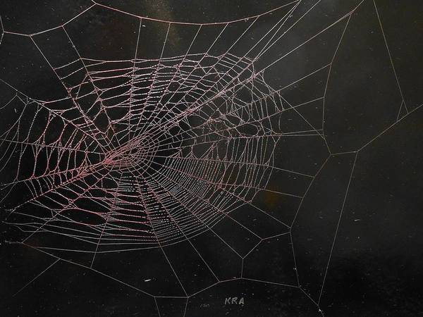 Poison Mixed Media - Spiders Web 133 by Kenneth Albury