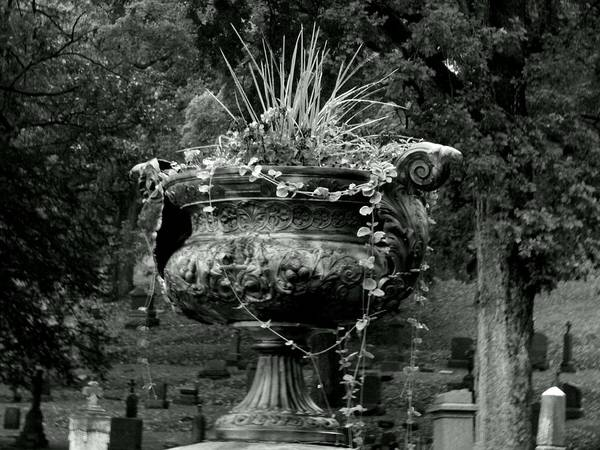 Photograph - Spiked Urn by Wild Thing
