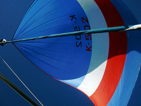 Flying A Kite Photograph - Spinnaker Flying by Tony Reddington