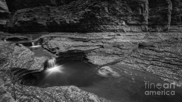 Cavern Photograph - Spinning Leaves Bw by Michael Ver Sprill