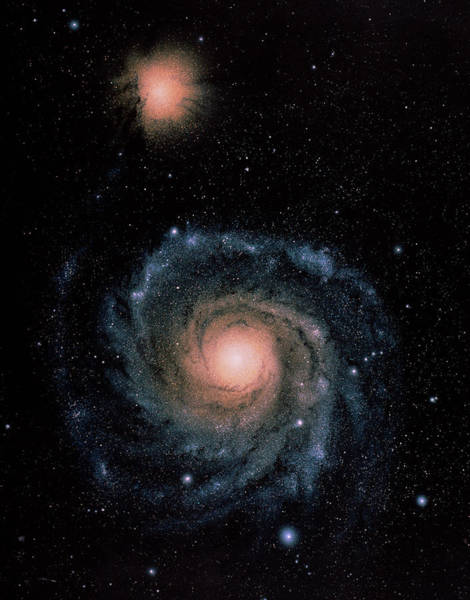 Interacting Galaxies Wall Art - Photograph - Spiral Galaxy M51 by Chris Butler/science Photo Library