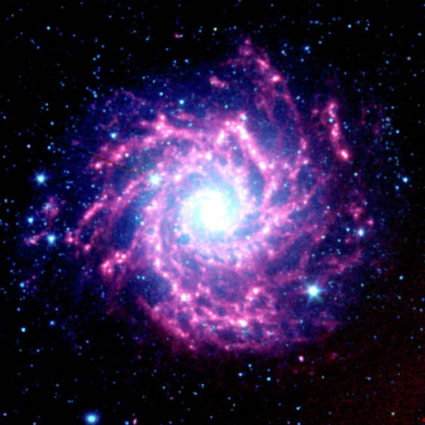 Pisces Photograph - Spiral Galaxy M74 by Jpl-caltech/stsci/nasa/science Photo Library