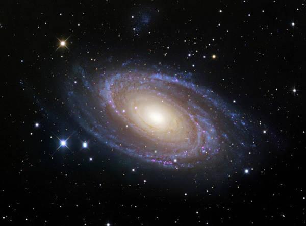 Ursa Major Photograph - Spiral Galaxy (m81) by Robert Gendler/science Photo Library