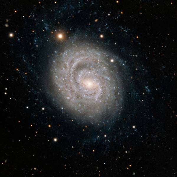 Astrophysics Wall Art - Photograph - Spiral Galaxy Ngc 1637 by European Southern Observatory