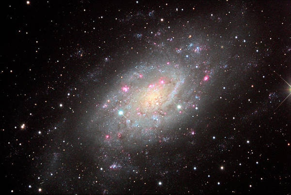 Wall Art - Photograph - Spiral Galaxy Ngc 2403 by Adam Block/science Photo Library